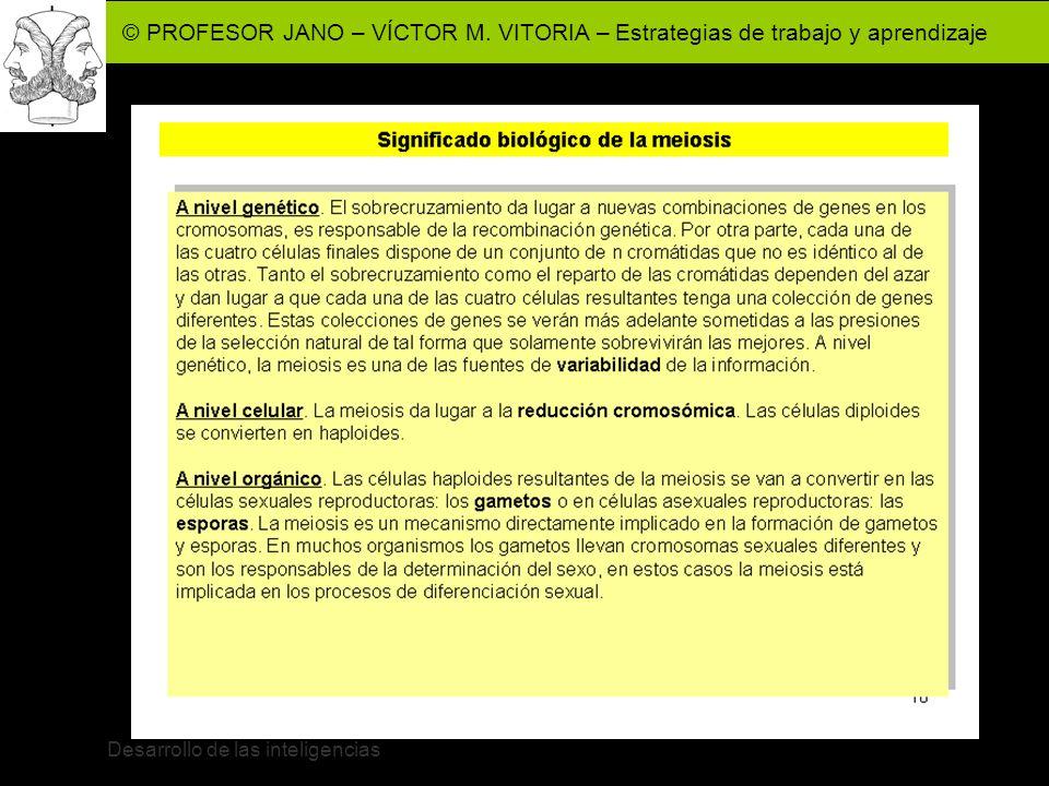 © PROFESOR JANO – VÍCTOR M. VITORIA – Estrategias de trabajo y aprendizaje Desarrollo de las inteligencias