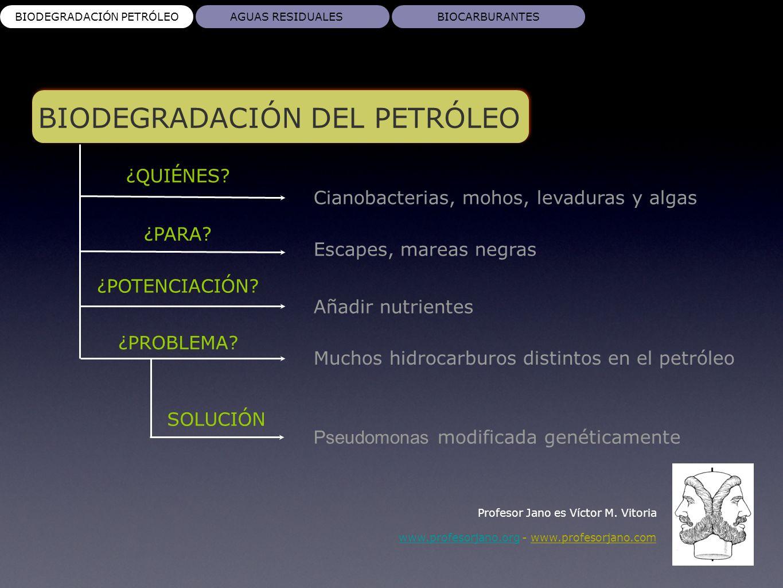AGUAS RESIDUALES Profesor Jano es Víctor M.