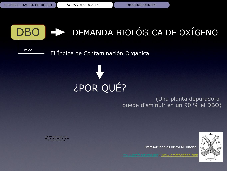 www.profesorjano.orgwww.profesorjano.org - www.profesorjano.com BIODEGRADACIÓN PETRÓLEOAGUAS RESIDUALESBIOCARBURANTES DBO Profesor Jano es Víctor M. V