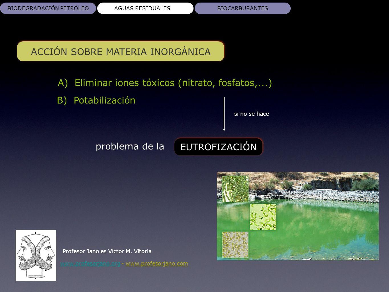 www.profesorjano.orgwww.profesorjano.org - www.profesorjano.com BIODEGRADACIÓN PETRÓLEOAGUAS RESIDUALESBIOCARBURANTES ACCIÓN SOBRE MATERIA INORGÁNICA