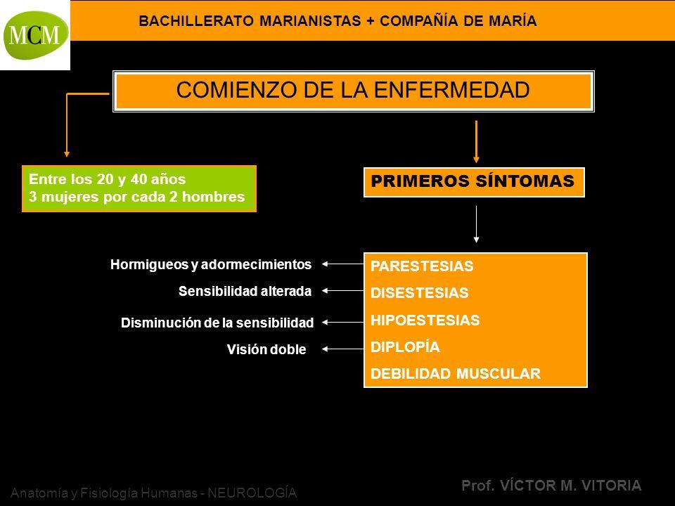 BACHILLERATO MARIANISTAS + COMPAÑÍA DE MARÍA Prof. VÍCTOR M. VITORIA Anatomía y Fisiología Humanas - NEUROLOGÍA COMIENZO DE LA ENFERMEDAD Entre los 20