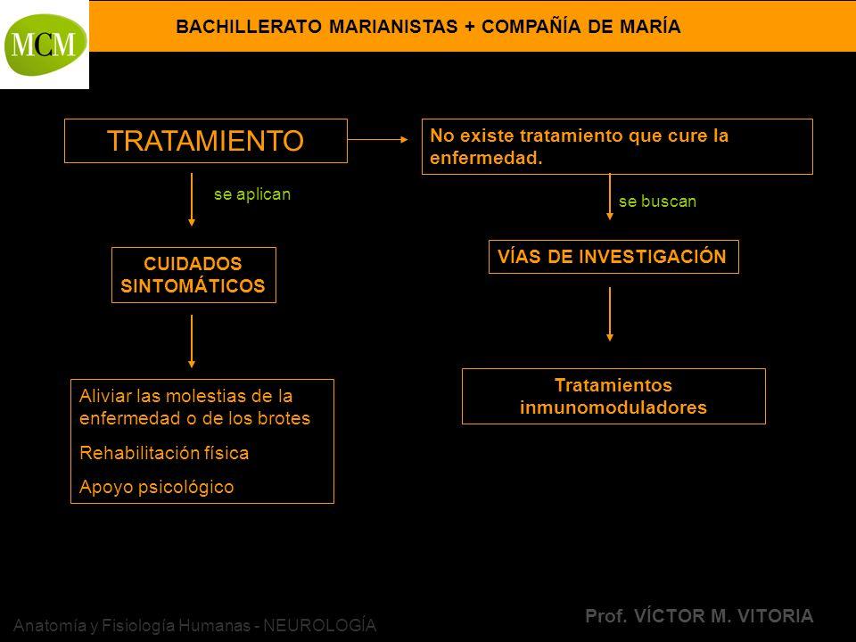 BACHILLERATO MARIANISTAS + COMPAÑÍA DE MARÍA Prof. VÍCTOR M. VITORIA Anatomía y Fisiología Humanas - NEUROLOGÍA TRATAMIENTO No existe tratamiento que