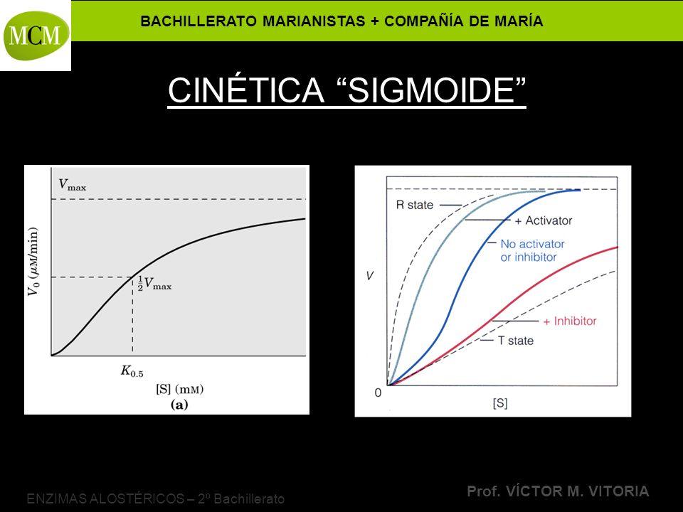 BACHILLERATO MARIANISTAS + COMPAÑÍA DE MARÍA Prof. VÍCTOR M. VITORIA ENZIMAS ALOSTÉRICOS – 2º Bachillerato CINÉTICA SIGMOIDE