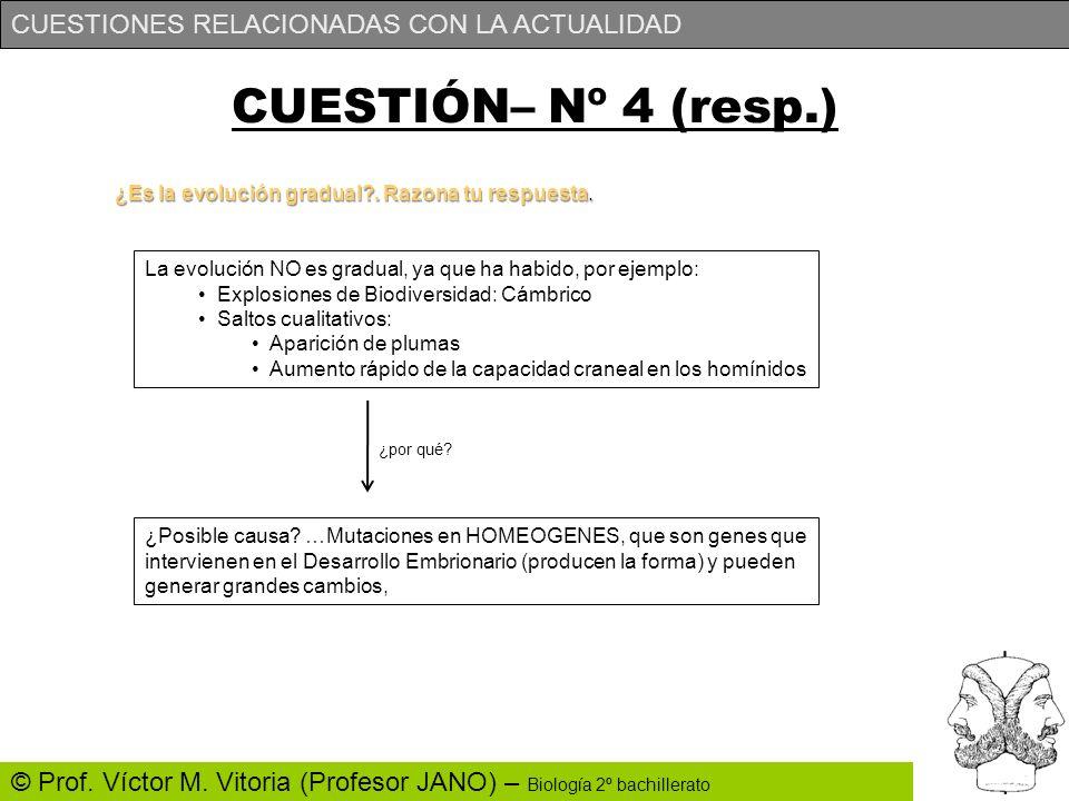 CUESTIONES RELACIONADAS CON LA ACTUALIDAD © Prof. Víctor M. Vitoria (Profesor JANO) – Biología 2º bachillerato CUESTIÓN– Nº 4 (resp.) ¿Es la evolución