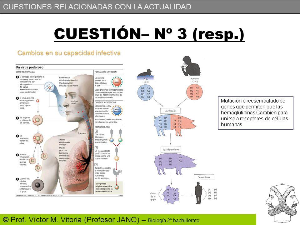 CUESTIONES RELACIONADAS CON LA ACTUALIDAD © Prof. Víctor M. Vitoria (Profesor JANO) – Biología 2º bachillerato Cambios en su capacidad infectiva CUEST