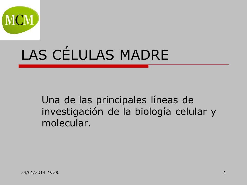 29/01/2014 19:021 LAS CÉLULAS MADRE Una de las principales líneas de investigación de la biología celular y molecular.