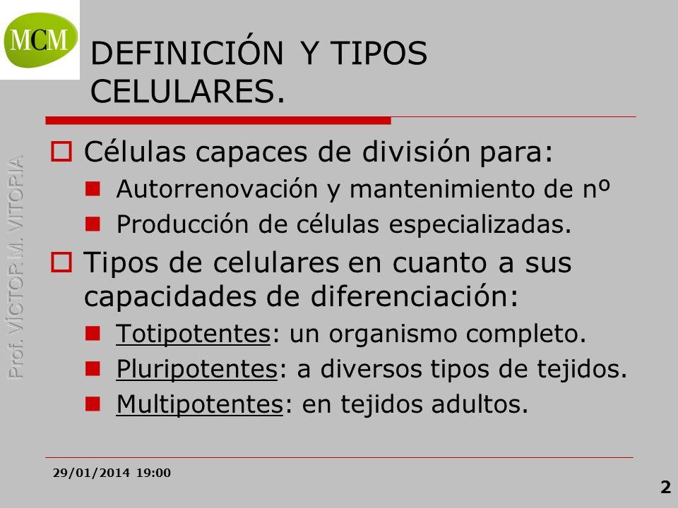 29/01/2014 19:02 2 DEFINICIÓN Y TIPOS CELULARES. Células capaces de división para: Autorrenovación y mantenimiento de nº Producción de células especia