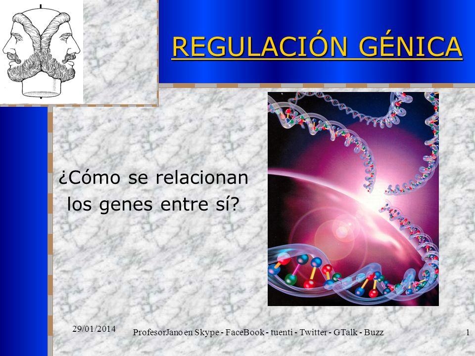 ProfesorJano en Skype - FaceBook - tuenti - Twitter - GTalk - Buzz1 29/01/2014 REGULACIÓN GÉNICA ¿Cómo se relacionan los genes entre sí?