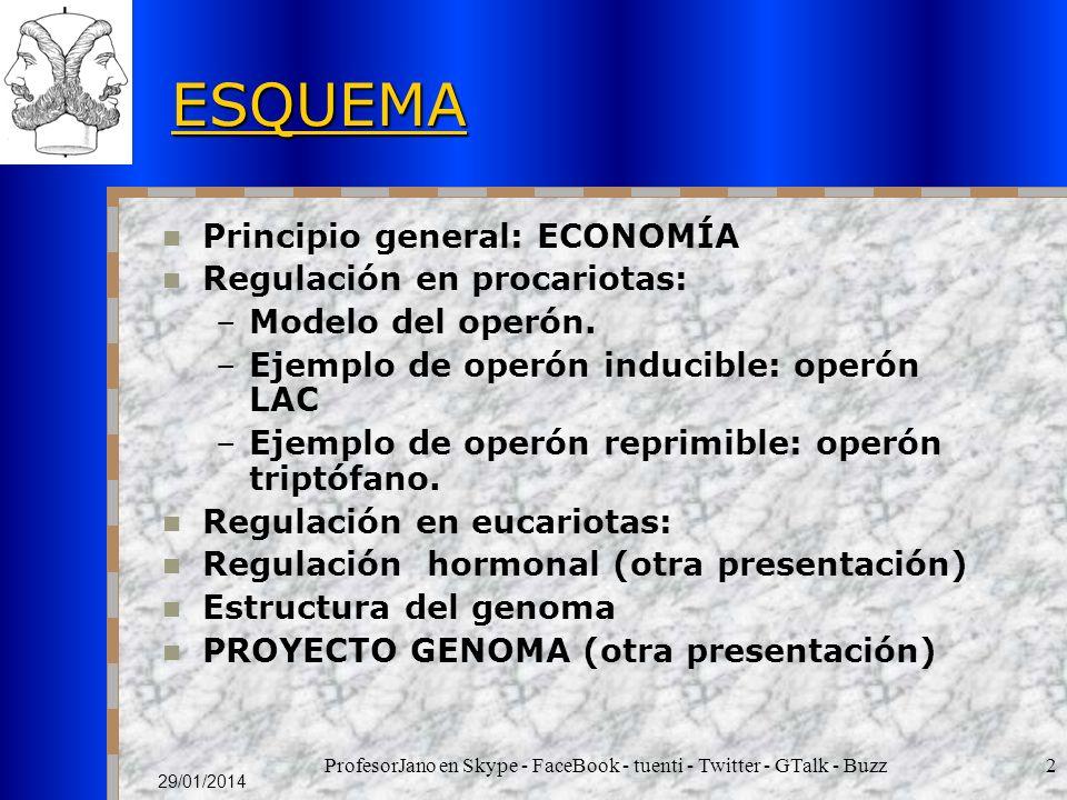 ProfesorJano en Skype - FaceBook - tuenti - Twitter - GTalk - Buzz2 29/01/2014 ESQUEMA Principio general: ECONOMÍA Regulación en procariotas: –Modelo