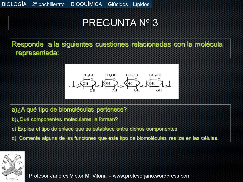Profesor Jano es Víctor M. Vitoria – www.profesorjano.wordpress.com BIOLOGÍA – 2º bachillerato – BIOQUÍMICA – Glúcidos - Lípidos PREGUNTA Nº 3 Respond