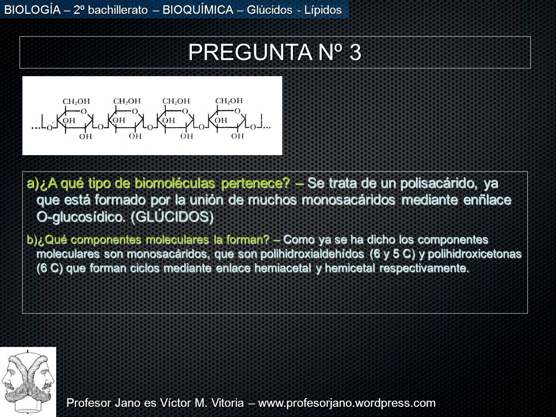 Profesor Jano es Víctor M. Vitoria – www.profesorjano.wordpress.com BIOLOGÍA – 2º bachillerato – BIOQUÍMICA – Glúcidos - Lípidos PREGUNTA Nº 3 a)¿A qu