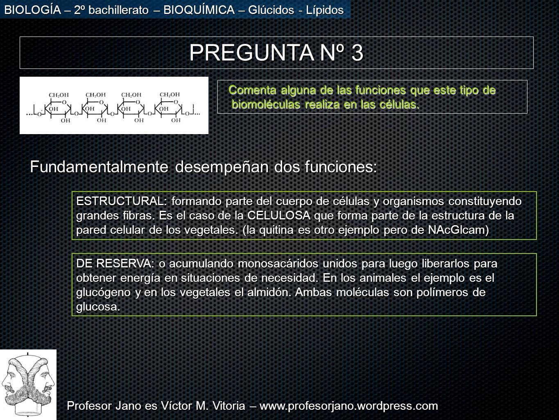 Profesor Jano es Víctor M. Vitoria – www.profesorjano.wordpress.com BIOLOGÍA – 2º bachillerato – BIOQUÍMICA – Glúcidos - Lípidos PREGUNTA Nº 3 Comenta