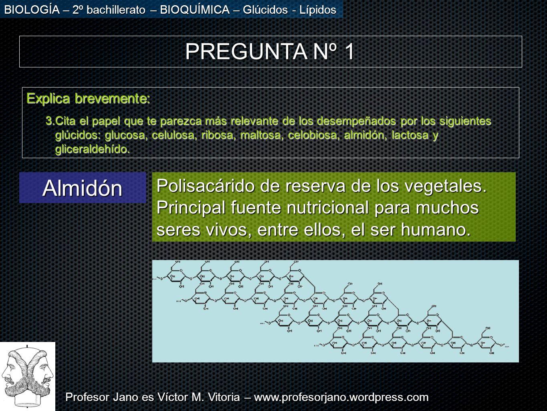 Profesor Jano es Víctor M. Vitoria – www.profesorjano.wordpress.com BIOLOGÍA – 2º bachillerato – BIOQUÍMICA – Glúcidos - Lípidos PREGUNTA Nº 1 Explica