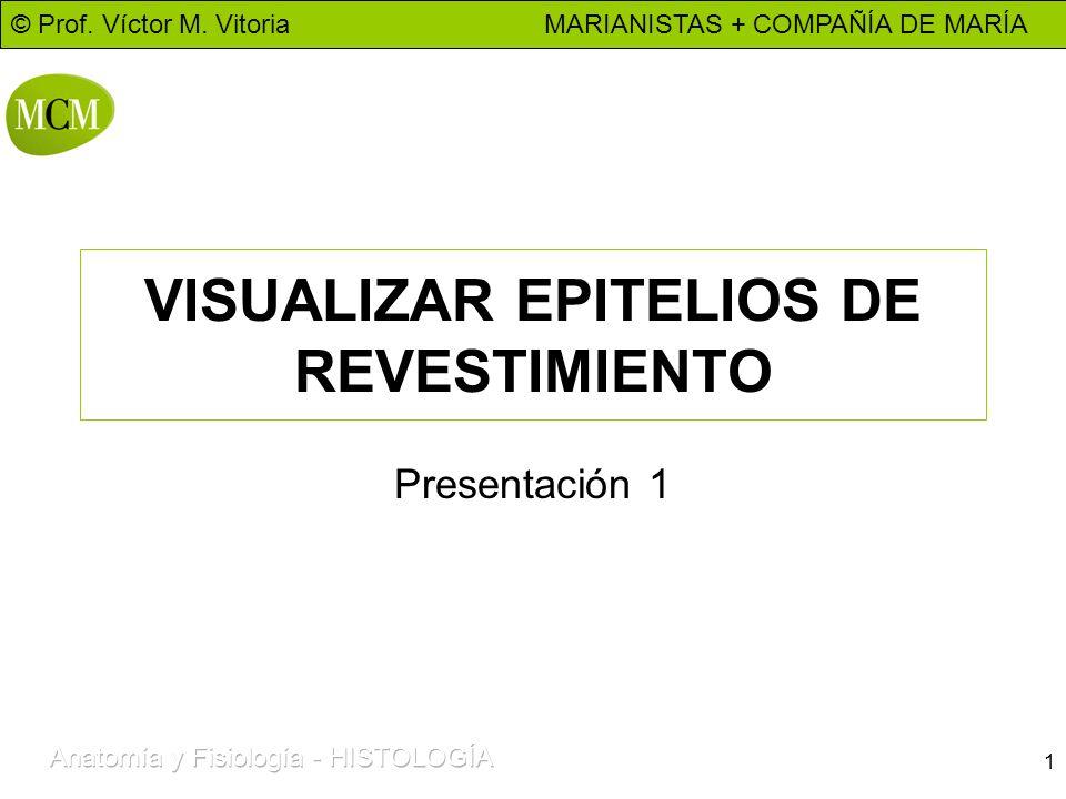 © Prof. Víctor M. Vitoria MARIANISTAS + COMPAÑÍA DE MARÍA 1 VISUALIZAR EPITELIOS DE REVESTIMIENTO Presentación 1