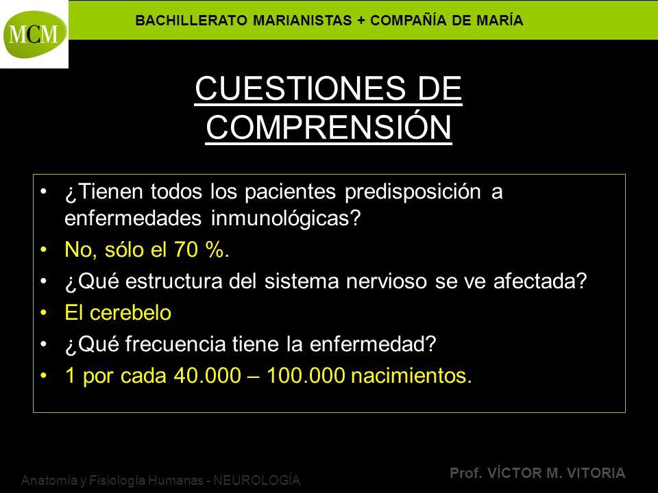 BACHILLERATO MARIANISTAS + COMPAÑÍA DE MARÍA Prof. VÍCTOR M. VITORIA Anatomía y Fisiología Humanas - NEUROLOGÍA CUESTIONES DE COMPRENSIÓN ¿Tienen todo