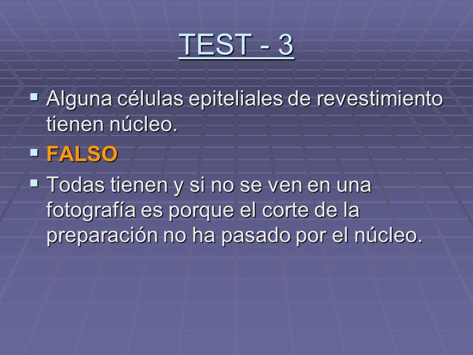 TEST - 3 Alguna células epiteliales de revestimiento tienen núcleo. Alguna células epiteliales de revestimiento tienen núcleo. FALSO FALSO Todas tiene