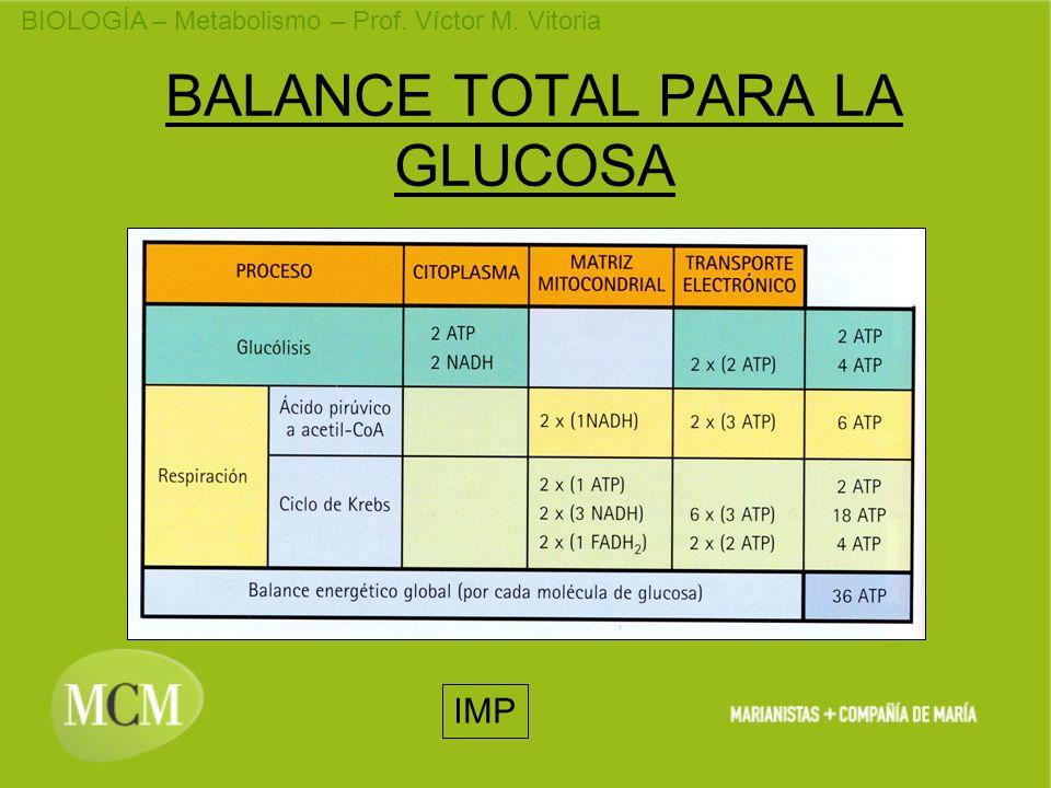 BIOLOGÍA – Metabolismo – Prof. Víctor M. Vitoria BALANCE TOTAL PARA LA GLUCOSA IMP