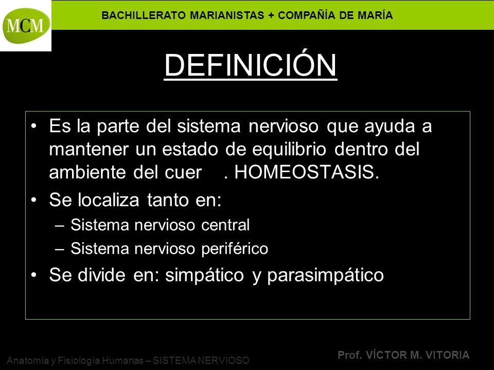 BACHILLERATO MARIANISTAS + COMPAÑÍA DE MARÍA Prof. VÍCTOR M. VITORIA Anatomía y Fisiología Humanas – SISTEMA NERVIOSO DEFINICIÓN Es la parte del siste