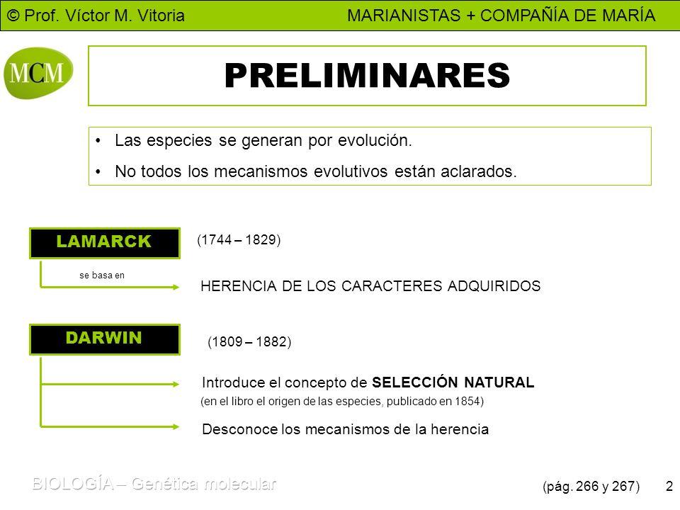 © Prof. Víctor M. Vitoria MARIANISTAS + COMPAÑÍA DE MARÍA 2 PRELIMINARES Las especies se generan por evolución. No todos los mecanismos evolutivos est