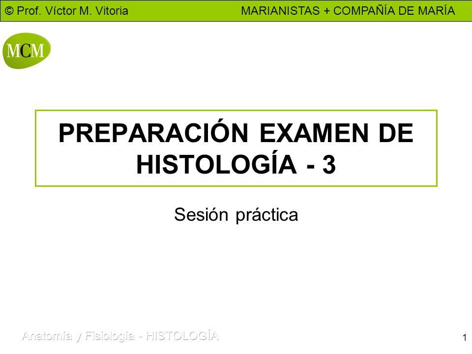 © Prof. Víctor M. Vitoria MARIANISTAS + COMPAÑÍA DE MARÍA 1 PREPARACIÓN EXAMEN DE HISTOLOGÍA - 3 Sesión práctica