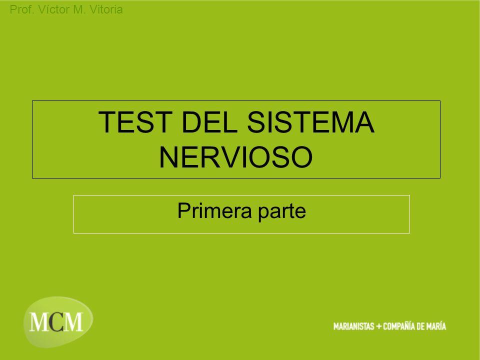 Prof. Víctor M. Vitoria TEST DEL SISTEMA NERVIOSO Primera parte