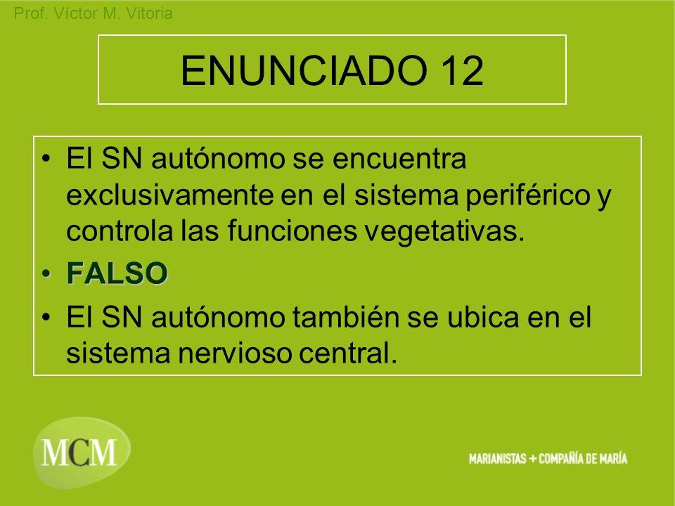 Prof. Víctor M. Vitoria ENUNCIADO 12 El SN autónomo se encuentra exclusivamente en el sistema periférico y controla las funciones vegetativas. FALSOFA