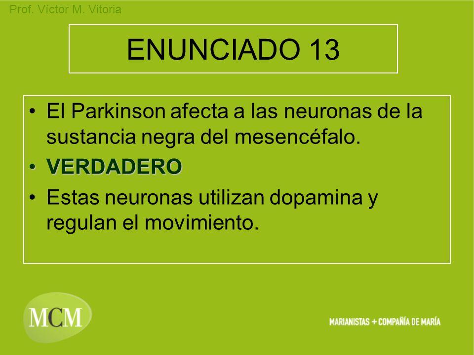 Prof. Víctor M. Vitoria ENUNCIADO 13 El Parkinson afecta a las neuronas de la sustancia negra del mesencéfalo. VERDADEROVERDADERO Estas neuronas utili