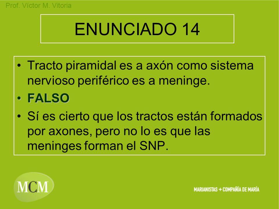 Prof. Víctor M. Vitoria ENUNCIADO 14 Tracto piramidal es a axón como sistema nervioso periférico es a meninge. FALSOFALSO Sí es cierto que los tractos