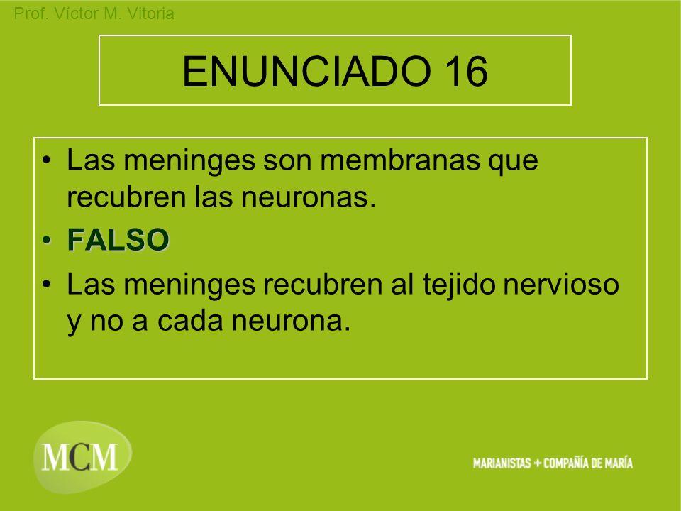 Prof. Víctor M. Vitoria ENUNCIADO 16 Las meninges son membranas que recubren las neuronas. FALSOFALSO Las meninges recubren al tejido nervioso y no a