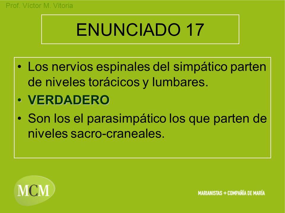 Prof. Víctor M. Vitoria ENUNCIADO 17 Los nervios espinales del simpático parten de niveles torácicos y lumbares. VERDADEROVERDADERO Son los el parasim