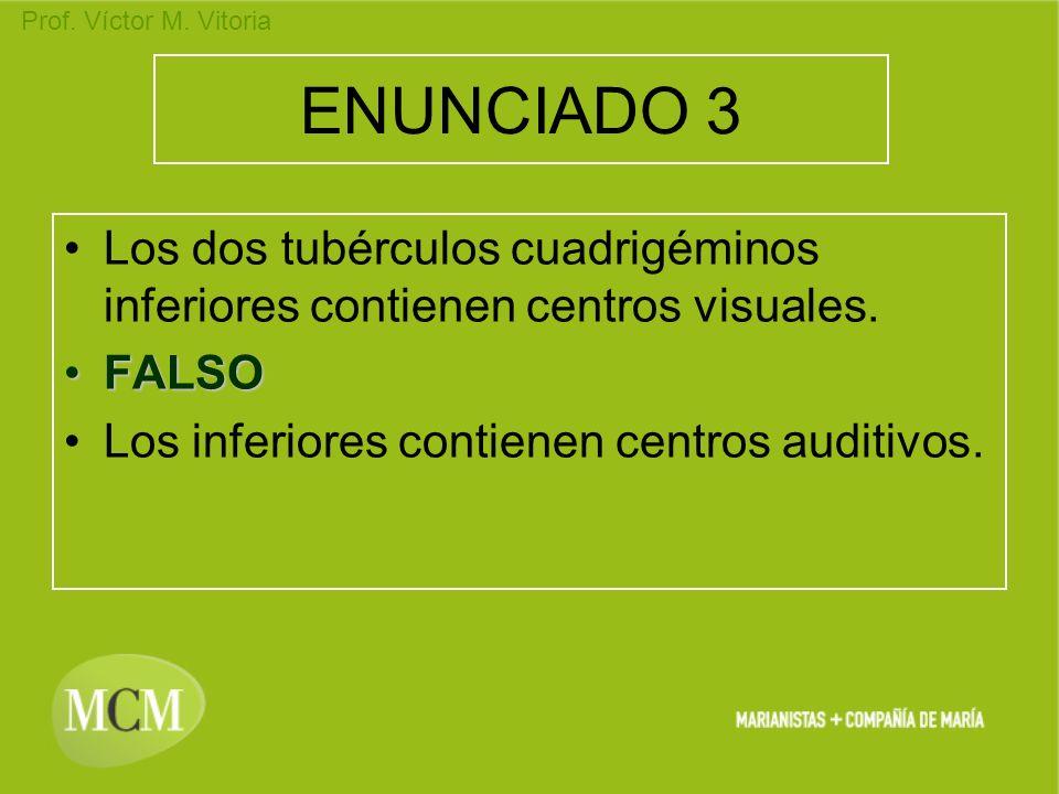 Prof. Víctor M. Vitoria ENUNCIADO 3 Los dos tubérculos cuadrigéminos inferiores contienen centros visuales. FALSOFALSO Los inferiores contienen centro