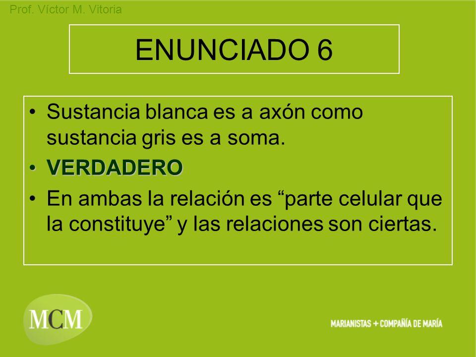 Prof. Víctor M. Vitoria ENUNCIADO 6 Sustancia blanca es a axón como sustancia gris es a soma. VERDADEROVERDADERO En ambas la relación es parte celular