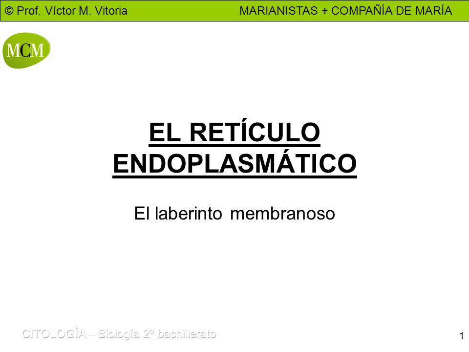 © Prof. Víctor M. Vitoria MARIANISTAS + COMPAÑÍA DE MARÍA 1 EL RETÍCULO ENDOPLASMÁTICO El laberinto membranoso