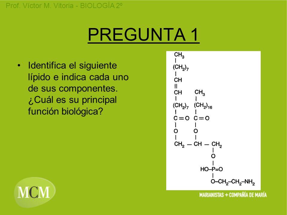 Prof. Víctor M. Vitoria - BIOLOGÍA 2º PREGUNTA 1 Identifica el siguiente lípido e indica cada uno de sus componentes. ¿Cuál es su principal función bi