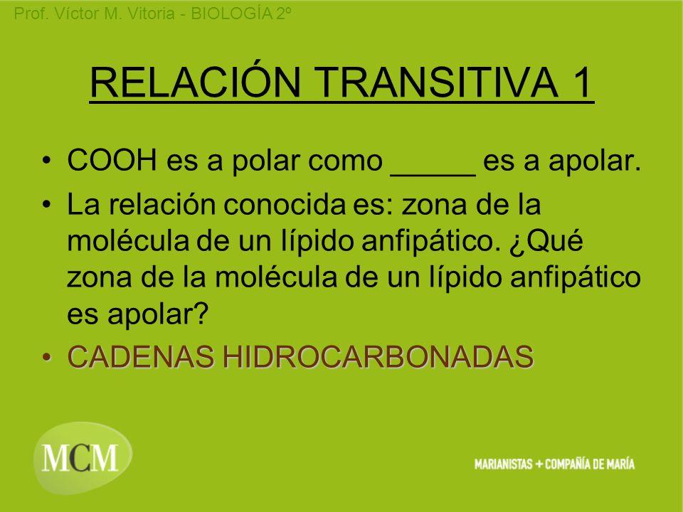 Prof. Víctor M. Vitoria - BIOLOGÍA 2º RELACIÓN TRANSITIVA 1 COOH es a polar como _____ es a apolar. La relación conocida es: zona de la molécula de un