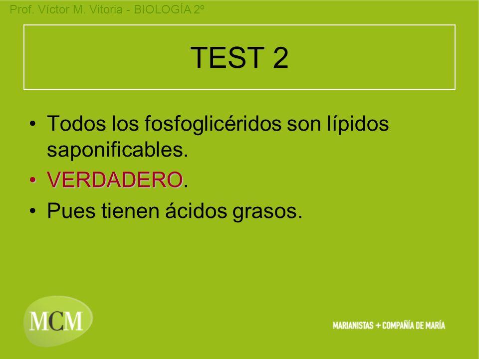 Prof. Víctor M. Vitoria - BIOLOGÍA 2º TEST 2 Todos los fosfoglicéridos son lípidos saponificables. VERDADERO. Pues tienen ácidos grasos.