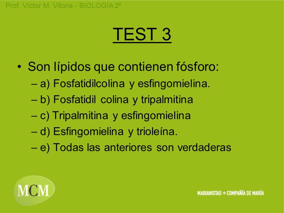 Prof. Víctor M. Vitoria - BIOLOGÍA 2º TEST 3 Son lípidos que contienen fósforo: –a) Fosfatidilcolina y esfingomielina. –b) Fosfatidil colina y tripalm