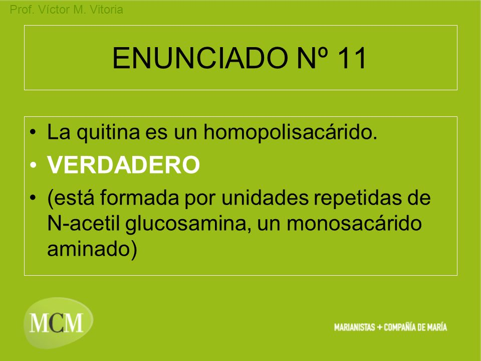 Prof. Víctor M. Vitoria ENUNCIADO Nº 11 La quitina es un homopolisacárido. VERDADERO (está formada por unidades repetidas de N-acetil glucosamina, un