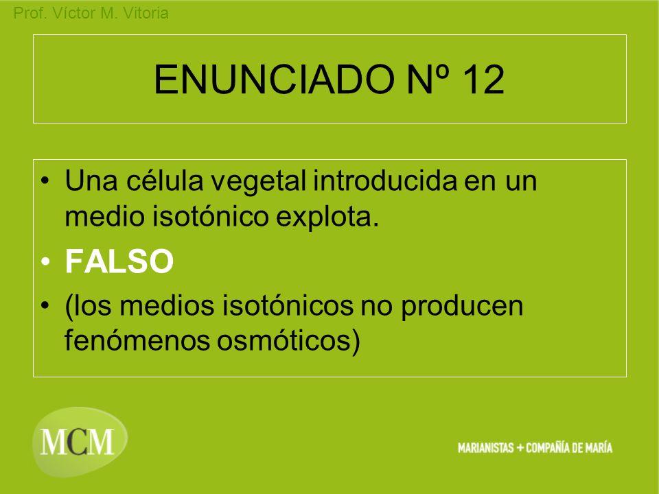 Prof. Víctor M. Vitoria ENUNCIADO Nº 12 Una célula vegetal introducida en un medio isotónico explota. FALSO (los medios isotónicos no producen fenómen