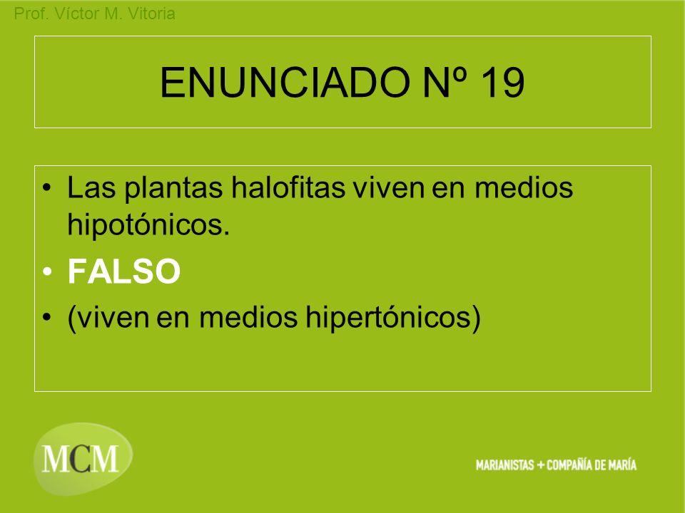 Prof. Víctor M. Vitoria ENUNCIADO Nº 19 Las plantas halofitas viven en medios hipotónicos. FALSO (viven en medios hipertónicos)