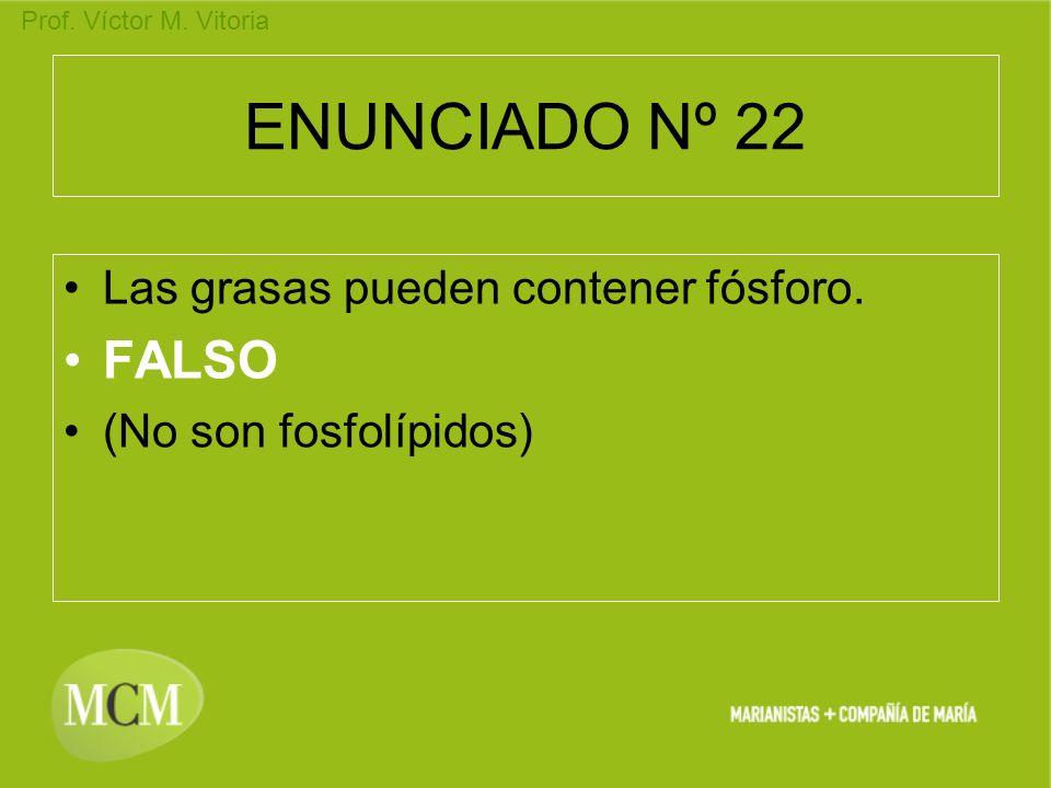Prof. Víctor M. Vitoria ENUNCIADO Nº 22 Las grasas pueden contener fósforo. FALSO (No son fosfolípidos)