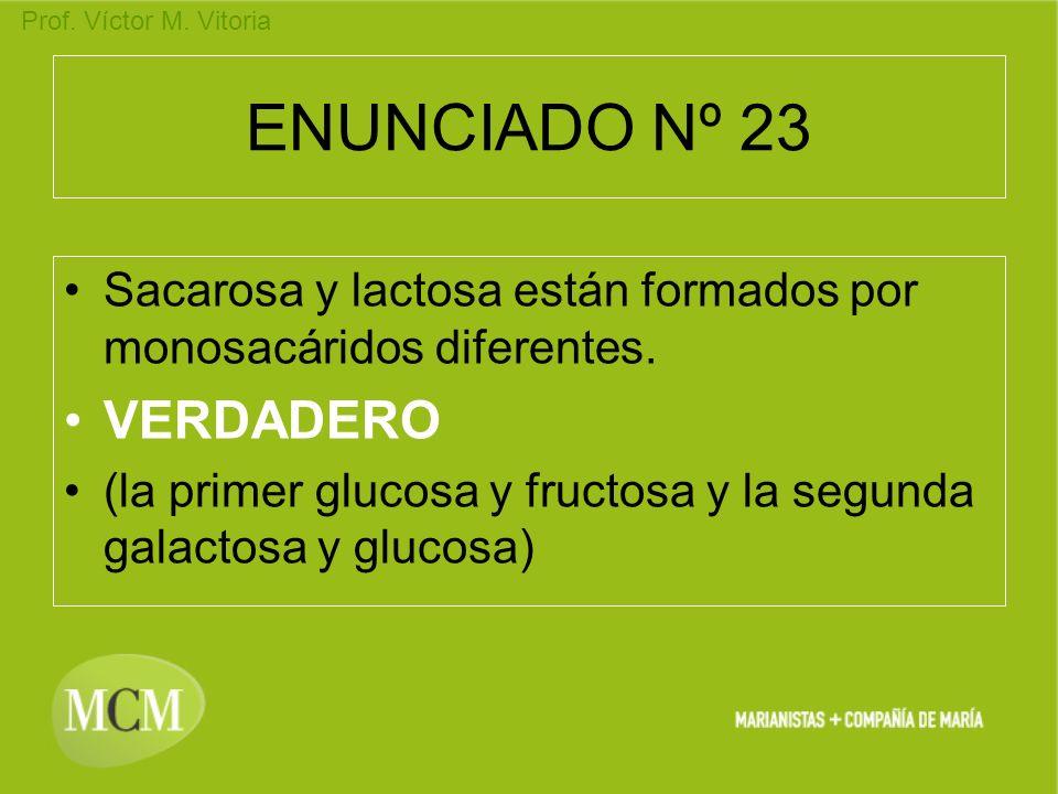 Prof. Víctor M. Vitoria ENUNCIADO Nº 23 Sacarosa y lactosa están formados por monosacáridos diferentes. VERDADERO (la primer glucosa y fructosa y la s
