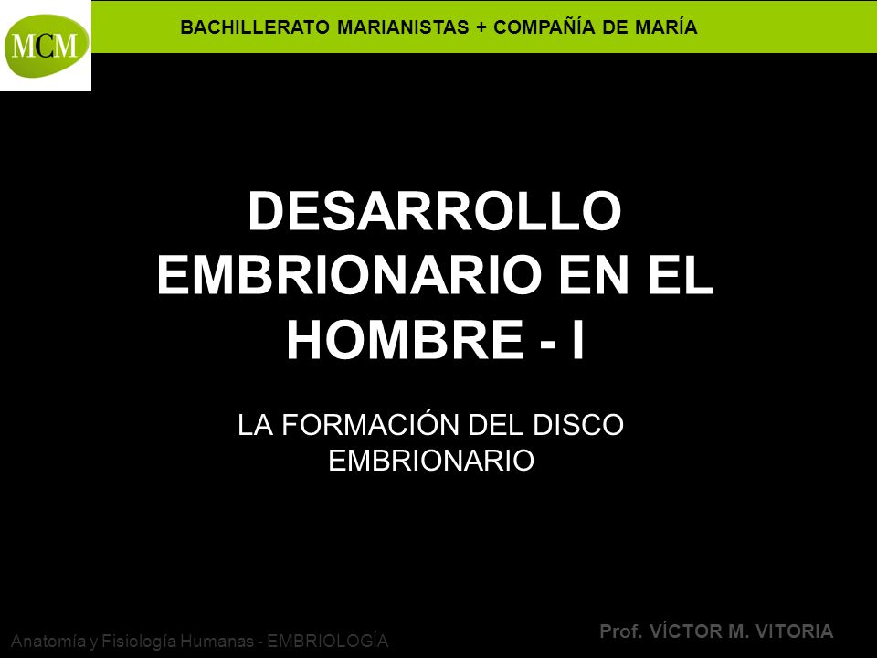 BACHILLERATO MARIANISTAS + COMPAÑÍA DE MARÍA Prof. VÍCTOR M. VITORIA Anatomía y Fisiología Humanas - EMBRIOLOGÍA DESARROLLO EMBRIONARIO EN EL HOMBRE -