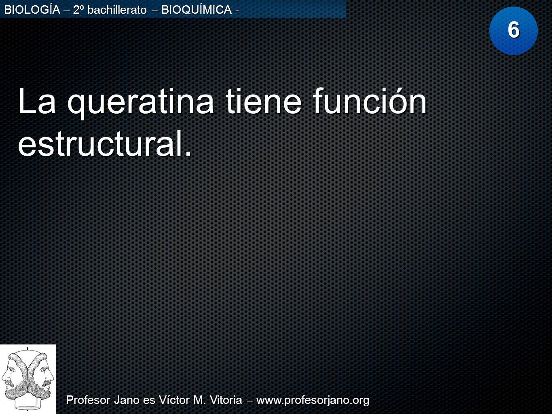 Profesor Jano es Víctor M. Vitoria – www.profesorjano.org BIOLOGÍA – 2º bachillerato – BIOQUÍMICA - La queratina tiene función estructural. 6