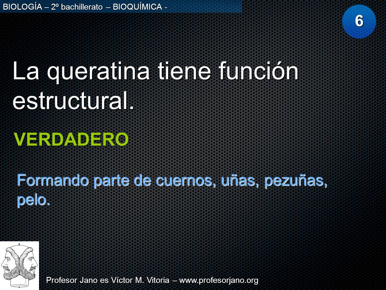 Profesor Jano es Víctor M. Vitoria – www.profesorjano.org BIOLOGÍA – 2º bachillerato – BIOQUÍMICA - La queratina tiene función estructural. 6 VERDADER