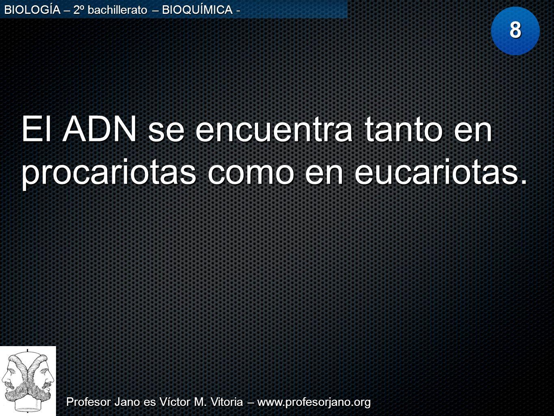 Profesor Jano es Víctor M. Vitoria – www.profesorjano.org BIOLOGÍA – 2º bachillerato – BIOQUÍMICA - El ADN se encuentra tanto en procariotas como en e