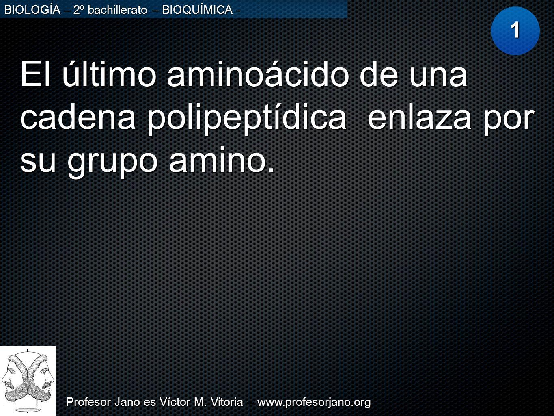 Profesor Jano es Víctor M. Vitoria – www.profesorjano.org BIOLOGÍA – 2º bachillerato – BIOQUÍMICA - El último aminoácido de una cadena polipeptídica e
