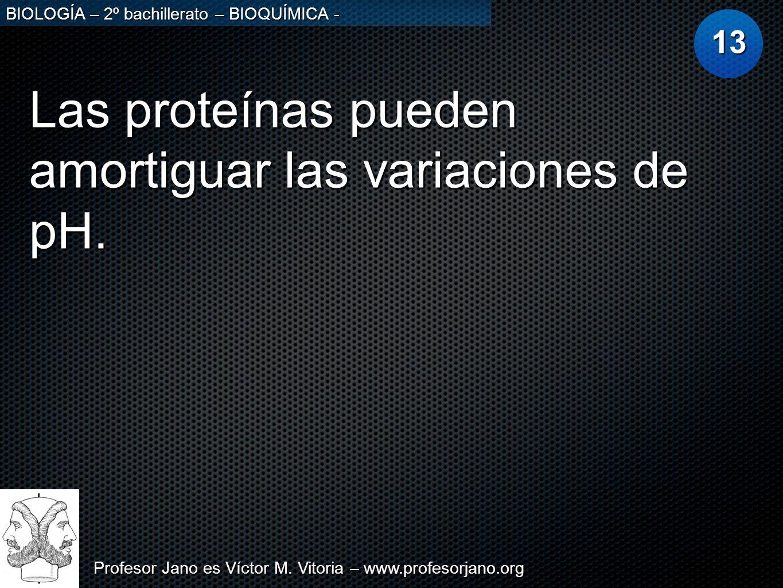 Profesor Jano es Víctor M. Vitoria – www.profesorjano.org BIOLOGÍA – 2º bachillerato – BIOQUÍMICA - Las proteínas pueden amortiguar las variaciones de