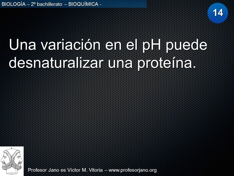 Profesor Jano es Víctor M. Vitoria – www.profesorjano.org BIOLOGÍA – 2º bachillerato – BIOQUÍMICA - Una variación en el pH puede desnaturalizar una pr