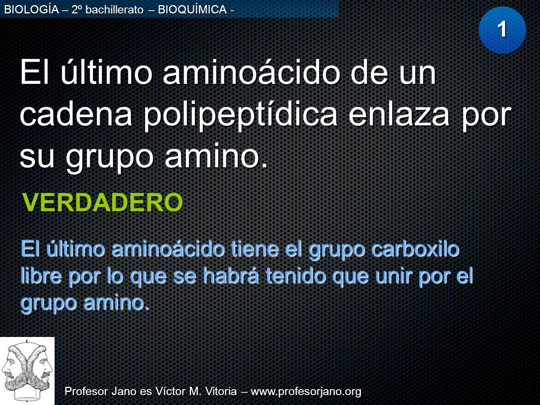 Profesor Jano es Víctor M. Vitoria – www.profesorjano.org BIOLOGÍA – 2º bachillerato – BIOQUÍMICA - El último aminoácido de un cadena polipeptídica en